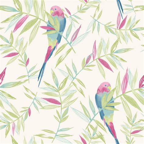 beautiful birds themed wallpapers   designs