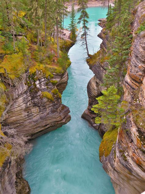 Athabasca Falls Gorge Alberta Canada Hd Wallpaper
