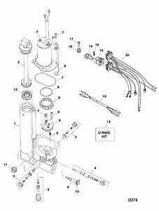 Force 50 Hp  1998  Trim Assembly  Hydraulic Parts