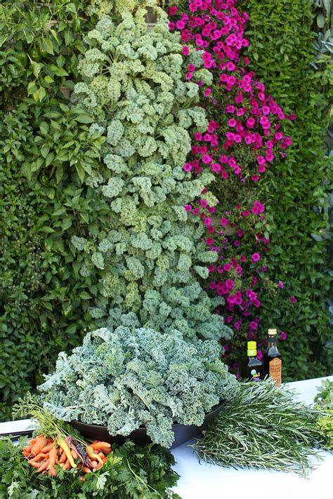 Edible Vertical Garden by Edible Vertical Garden Livewall Green Wall System