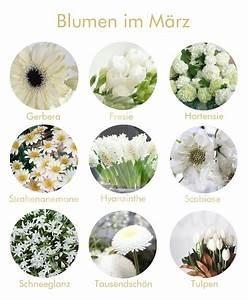Welche Balkonpflanzen Ab März : blumen im m rz hochzeit deko pinterest blumen brautstr u e und hochzeitsdetails ~ Whattoseeinmadrid.com Haus und Dekorationen