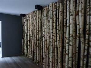 habillage mur bois brut mzaolcom With delightful habiller un mur exterieur en bois 1 habillage mur interieur en bois mzaol