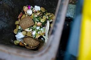 Maden In Der Mülltonne : region m lltonne tipps gegen gestank und maden offenburg schwarzw lder bote ~ Indierocktalk.com Haus und Dekorationen