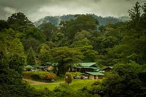 Danum Valley | Redefining Travel