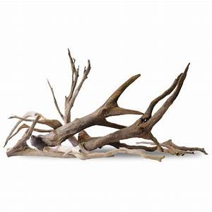 Driftwood Orchid inspiration for Calvin Klein