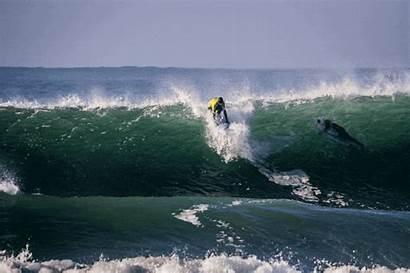 Gifs Surfer Gfycat