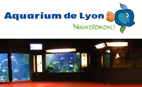 aquarium de lyon reduction aquarium de lyon reduction 28 images aquarium de lyon poisson picture of aquarium de lyon
