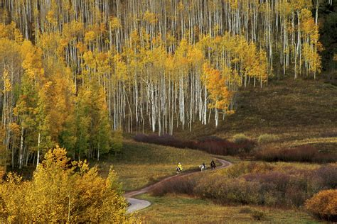 colorado fall color guide best hikes drives and events