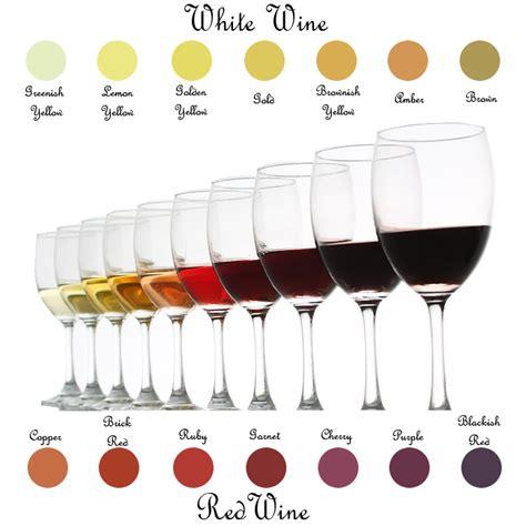 tasting colors h e wines wine knowledge