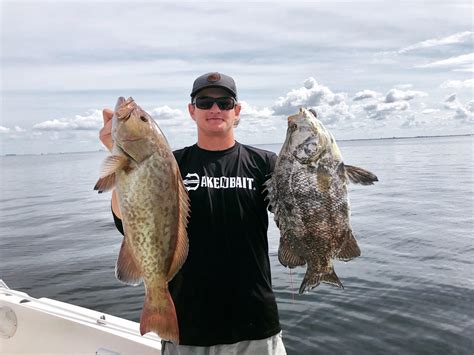 grouper triple tail gag fishing comments