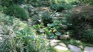 Gartengestaltung Unter Bäumen : einen waldgarten anlegen ziergarten ~ Yasmunasinghe.com Haus und Dekorationen