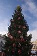 CRW_2613.jpg | Christmas tree at the Belfast city hall ...
