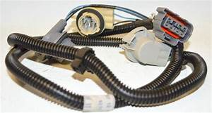 Acdelco Rear Tail Lamp Wiring Harness