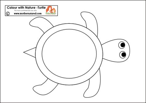 best photos of turtle template printable printable paper