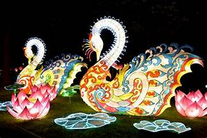 """"""" A Celebration of Lights"""" - The Chinese Lantern Festival ..."""