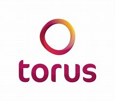 Image result for Torus Housing Association Logo