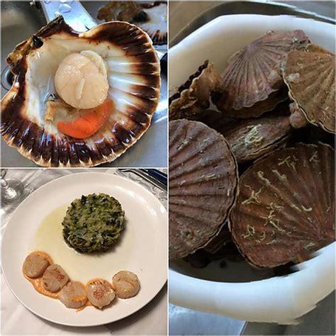 cuisiner les coquilles st jacques avec corail recette de coquille st jacques sauce corail