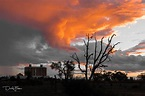 Zenfolio | David Foster - Travelling Outback Tracks to ...