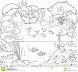 Pond Coloring Duck Habitat Vector Stagno Colorare Colorear Canards Mare Aux Animals Kleurende Coloritura Anatra Dell Coloriage Disegni Pato Estanque sketch template