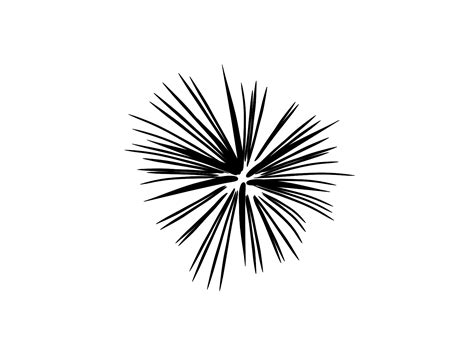 firework clipart black and white black and white fireworks svg clip arts