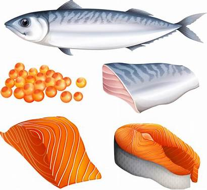 Salmon Clipart Clip Foods Fish Cuts Different