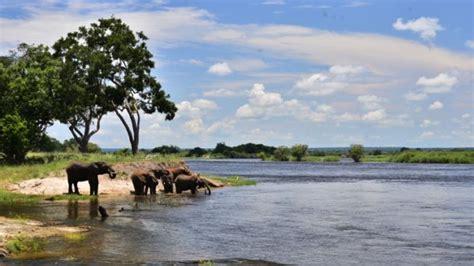 Zambezi River Facts and Information