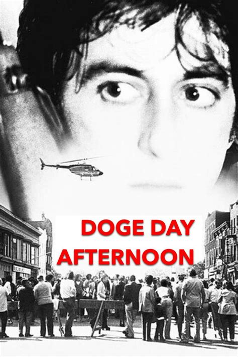 Doge Day Afternoon : dogecoin