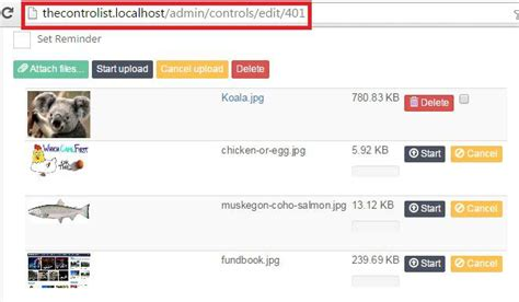 Jquery File Upload Plugin For Cakephp 2.x