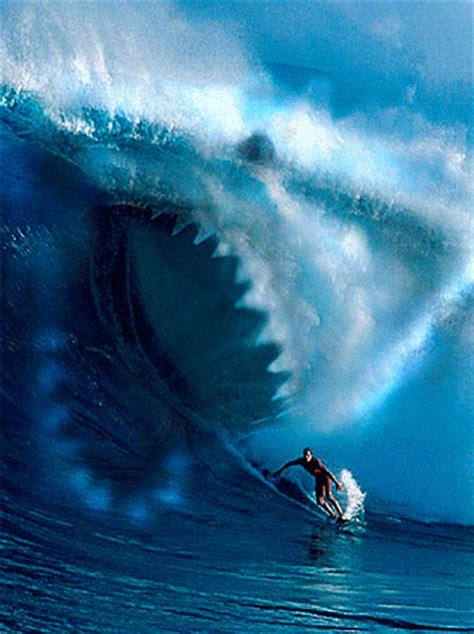 gifs animados de tiburon pelicula gifmania