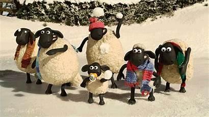 Giphy Sheep Shaun Gifs