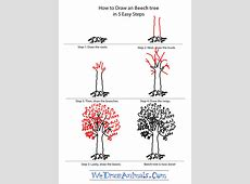 How to Draw a Beech Tree