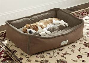dog bolster bed with removable cover frontage dog bolster With dog bed with removable cover