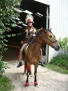 Costume D Indien : id es d guisement indien que faire des crins ~ Dode.kayakingforconservation.com Idées de Décoration