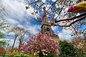 Les Fleurs Paris : le japon paris ~ Voncanada.com Idées de Décoration