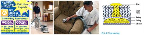 Commercial Carpet Cleaning San Diego