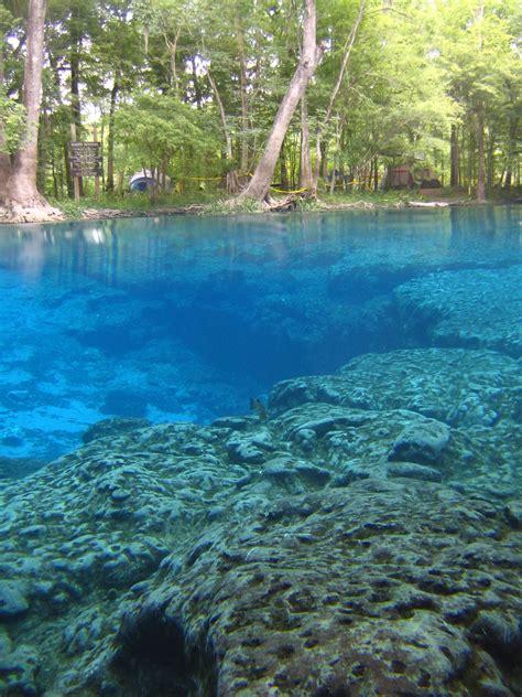 underwater photographer jonathon keeners gallery north