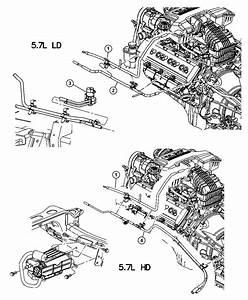 2004 Dodge Ram 2500 Harness  Vapor Purge  Emission  Control  Vacuum
