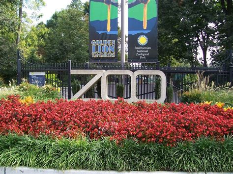 zoo national zoos washington dc smithsonian zoological park redefining beauty face