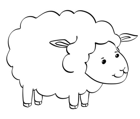 cute sheep coloring page  printable coloring pages