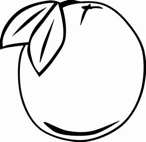 Orange Outline Fruit Clip Art at Clker.com - vector clip ...