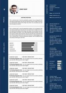 Recruiter Resume Summary Modern Graphic Designer Resume Template Ms Word Format