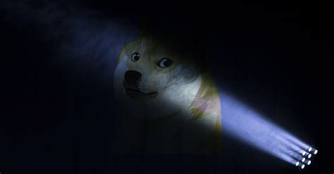 Dogecoin steals the crypto spotlight as 'DogeDay' trends ...