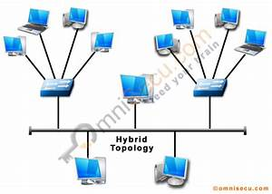 Information Technology  Introduction To Networking