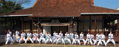 Shotokan Karate Blumenau Sc Santa Catarina Sc Março 2012