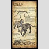 Prehistoric Predators Bear Dog | 1240 x 2273 jpeg 1608kB