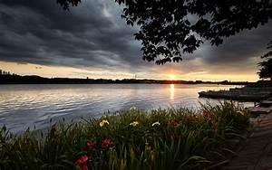 Landscape, River, Flowers, Dark, Clouds, Isanuma, Kawagoe, Shi