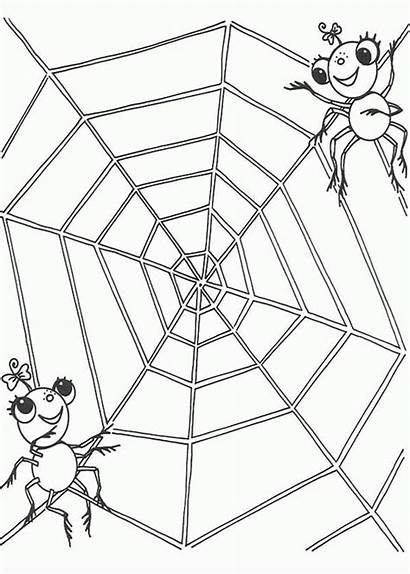 Spider Web Coloring Simple Drawing Edge Couple