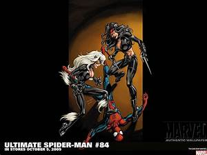 Ultimate Spider-Man Wallpaper and Background | 1440x1080 ...