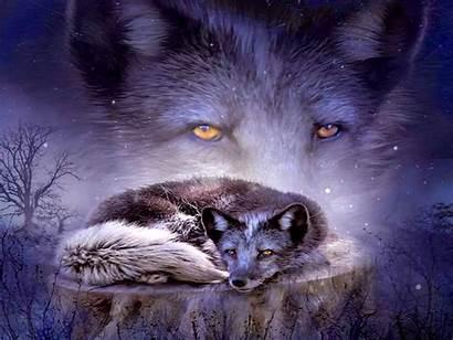Fox Spirit Wolves Wolf Purple Cool Wallpapers