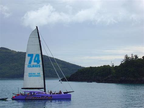 Camira Catamaran Australia by Photo Of Camira Sailing Catermaran Free Australian Stock